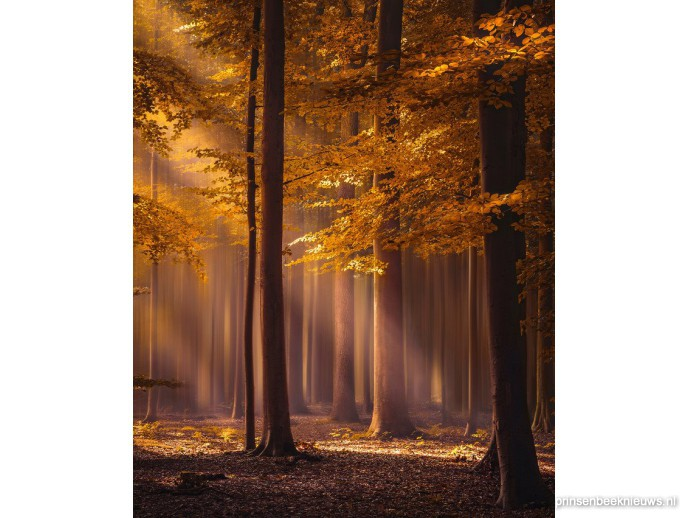 Fotograaf wint met Liesbos