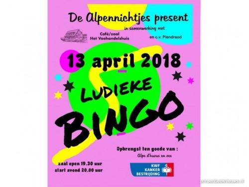 Ludieke bingo Alpennichtjes