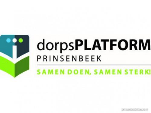 Enquete website Dorpsplatform