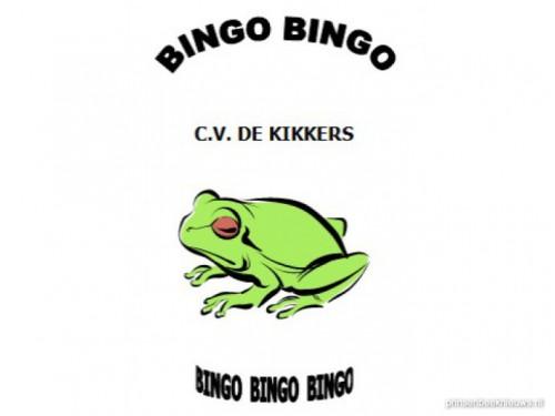 Bingo CV de Kikkers