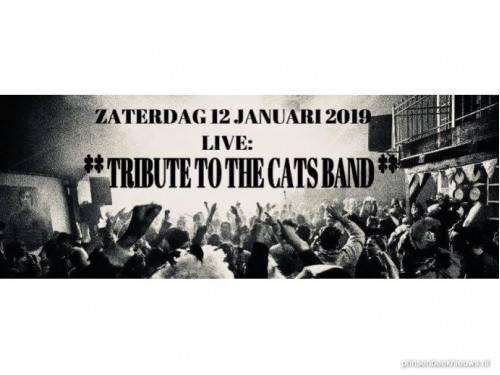 Tribute tot the Cats Band bij Manege Overbos