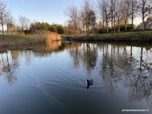 Tijdelijke pop-up horeca in Park Over-Bos