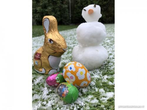 Paashaas ontmoet sneeuwpop