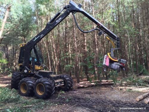 Bomenkap in Liesbos en Mastbos